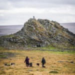 stock-photo-82738049-couple-walk-their-dogs-across-dartmoor-near-plymouth